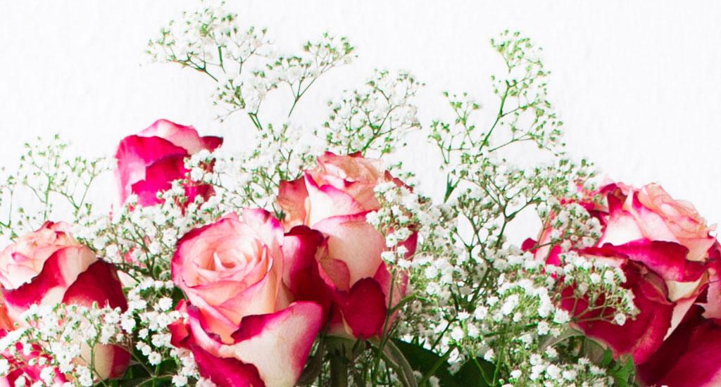 5 ways to make fresh flowers last longer home blog - Ways to make your flowers last longer ...